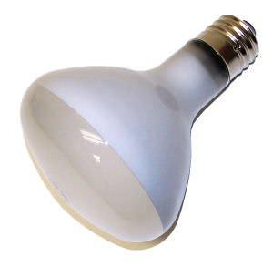 300 Watt Incandescent Flood Light