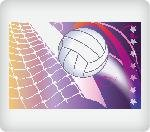 Volleyball Edible Icing Image (1/4 Sheet)