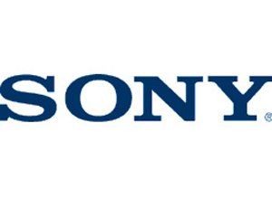 Sony IC CXA1213BS Part Number: 8-752-058-64, Accessories