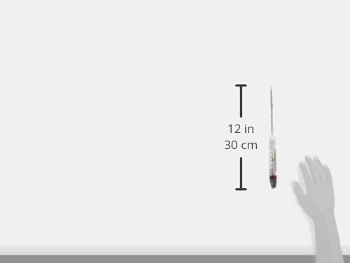 Living Sea hydrometer-thermometer C e F, grande, 30,5 30,5 30,5 cm 2aef41