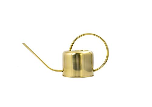 Kikkerland WC01 Vintage Watering Can ()