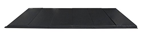 Z-Athletic Folding Panel Mats for Gymnastics, Martial Arts, Tumbling (6ft x 12ft x 2in, Black)