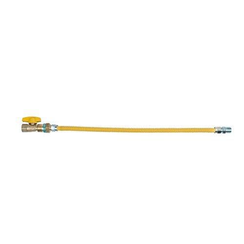 BrassCraft CSSDK4E-24 P20 1/2-Inch FIP Gas Valve x 1/2-Inch MIP x 24-Inch Gas Connector with EFV 1/2-Inch OD by BrassCraft