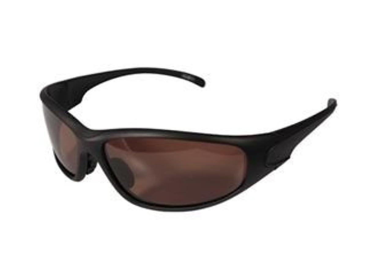 [해외] 스피드 피트 바이커의 썬글라스 BH-A실리즈 프레임:매드 블랙/렌즈:브라운 편광