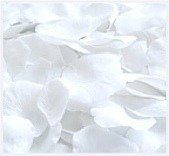 Bags Of White Rose Petals - 7