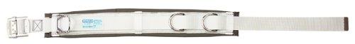 デンサン 柱上安全帯用ベルト DB-95DS-WT [落下防止 電気工事 高所での安全作業]  B006WF83XS