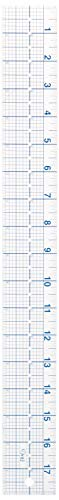 Dritz 831 See-Thru Ruler