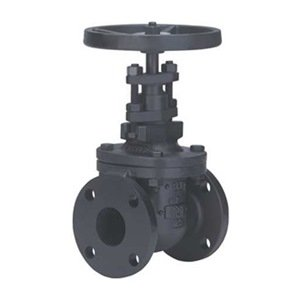 Gate Valve, Size 2.5 In, Flanged, Cast Iron by Milwaukee Valve
