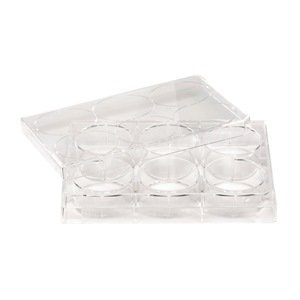 ell Non-treated Plate with Lid, Flat Bottom, Sterile (Case of 100) (Non Treated Microplates)