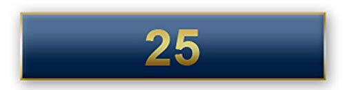 (The Pin People 25 Years Of Service Blue Citation Bar)