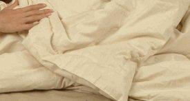 Mattress Pad - Pure Rest Organic Wool Filled Mattress Pad (Full 54