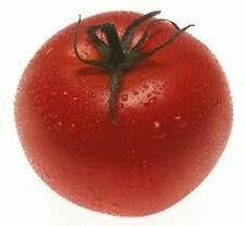 porter tomato - 1