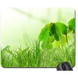 Absolutly beautiful spring Mouse Pad, Mousepad