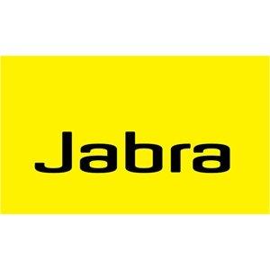 jabra-ear-cushion-10-pack-leatherette-14101-37