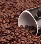 Coffee Shopee Coffee Beans Farm Fresh Roasted Coffee Beans 100  Pure Arabica  4Oz