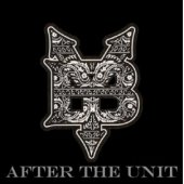 Young Buck - After The Unit - Zortam Music