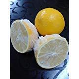 Lemon Wrap, Lemon Covers, Lemon Stretch Wraps, 100 Count ()