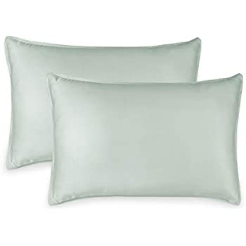 Pure Bamboo 2pc Queen Pillowcase Set - 100% Bamboo Luxuriously Soft Bed Sheets (2 Queen Pillowcases, Sea Glass)