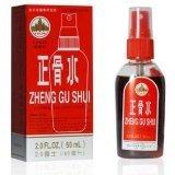 Zheng Gu Shui Lotion analgésique externe en flacon pulvérisateur