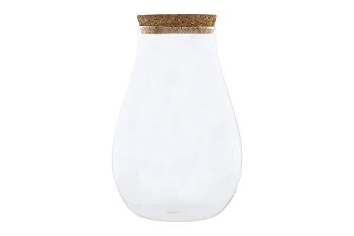 Creative Co-op Large Clear Cork Lid Glass Jar, 8 - Jars 8 Inch