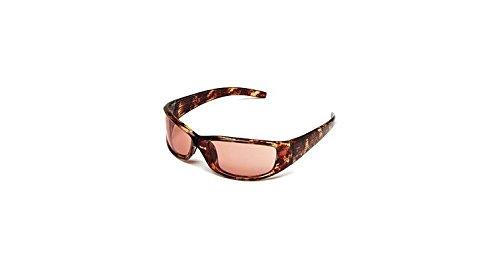 Body Specs Sunglasses V-8 Demi Brown Nylon Frame Brown Lens V-8 - Body Sunglasses Specs