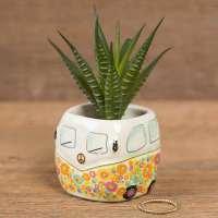 Natural Life Van Succulent Keepsake Desk Plant