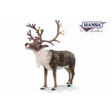 Nordic Reindeer - 1