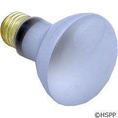 - Pentair SpaBrite / AquaLight Floodlamp, med. base, 60 watt Replacement Parts 79108000