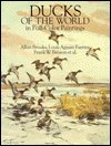 Ducks of the World in Full-Color Paintings, Brooks, Allan and Fuertes, Louis A., 0486261204