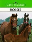 img - for Horses by Elsa Posell (1981-09-03) book / textbook / text book