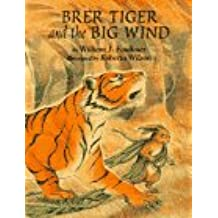 Amazon william faulkner childrens books books brer tiger and the big wind fandeluxe Images