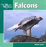 Falcons, Wayne Lynch, 1559719117
