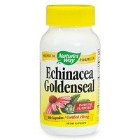 Echinacea manière de la nature et Goldenseal, 100 Capsules