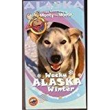 (The Adventures of Monty the Moose - Wacky Alaska WInter)