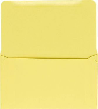 6 3/4 Remittance Envelopes (3 5/8 x 6 1/2 Closed) - Pastel Canary (1000 - Envelopes Remittance