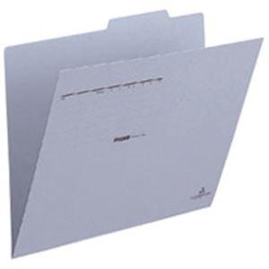 プラス 個別フォルダー FL-031IF A4E 青 100枚 生活用品 インテリア 雑貨 文具 オフィス用品 ファイル バインダー クリアケース クリアファイル 14067381 [並行輸入品] B07P2MNDBM