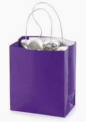 Fun Express Mini Purple Gift Bag (2 dozen)