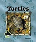 Turtles, Julie Murray, 1577657209