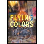 Flying Colors - Story of a Remarkable Group of Artists & the Transcendent Power of Art (02) by Lefens, Tim [Paperback (2003)]