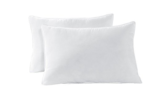 QUEEN Size Bed Pillow Set White Fresh Polyester – Double Stitch Hypoallergenic Dust Mite Resistant, Piped Edges Down Alternative 2-Pack BY Cozy Beddings