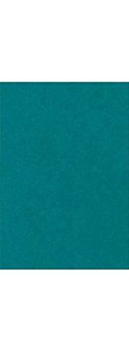 11 x 17 Cardstock - Teal (50 Qty.) | Perfect for Crafting, Invitations, Scrapbooking, 11x17 Photos, Brochures | Printable | 100lb. Text Weight | 1117-C-25-50