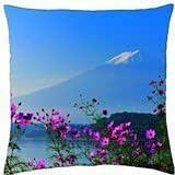 MOUNT FUJI in SPRING - Throw Pillow Cover Case (18
