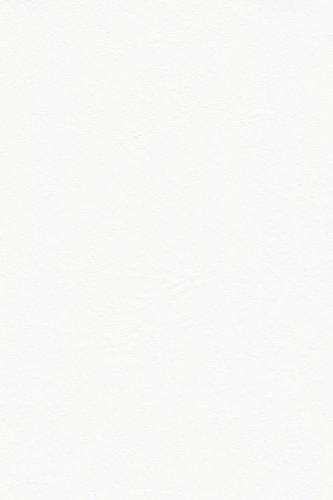 - Galaxy Heavyweight Vinyl Tablecloth, 60-Inch Round, White [Kitchen] by Fairfax Collection