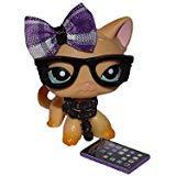 Noa Store Littlest Pet Shop Clothes LPS Accessories (Purple Custom Nerd Set) -
