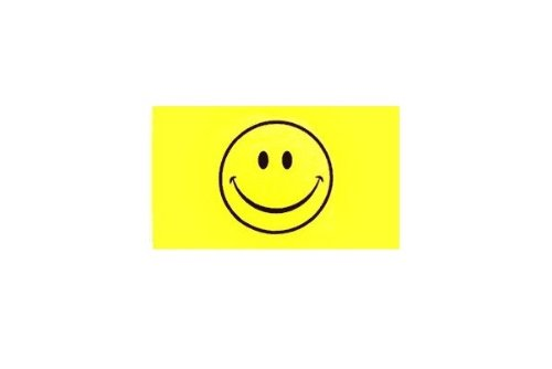 6 ft. Smiley Face Bicycle Safety Flag with Rear Axle Mounting Bracket