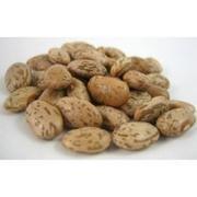 Bulk Peas And Beans Organic 100% Organic Pinto Beans 25 Lbs by Bulk Peas And Beans Organic