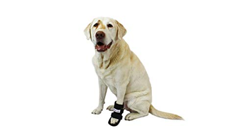 Walkin' Pet Splint for Dogs, Canine Bootie Style Leg Splint with Foam Inserts for a More Custom Fit