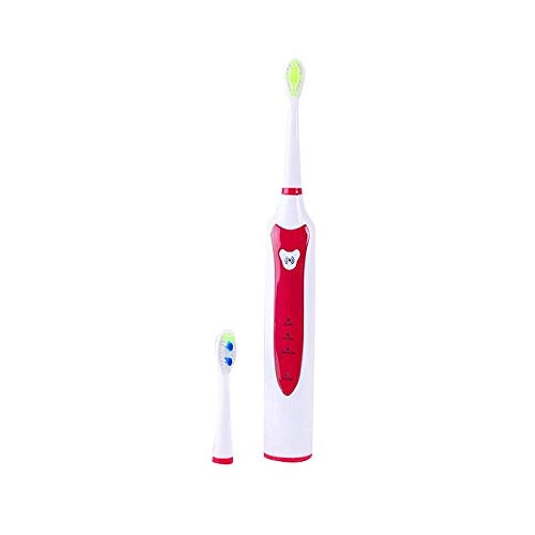 証言前提寛解電動歯ブラシスマートソニック電動歯ブラシ誘導充電器2ピース交換可能なヘッド環境抗菌歯ブラシオーラルケア