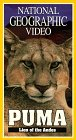 National Geographic's Puma: Lion of the Andes [VHS]