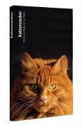 Katzenzauber: Macht und Magie auf vier Pfoten (Die Süssigkeiten des Lebens)